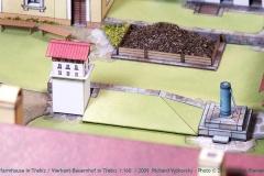 TREBIZ-PICT0057